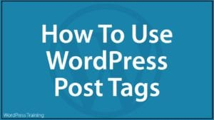 How To Use WordPress Post Tags
