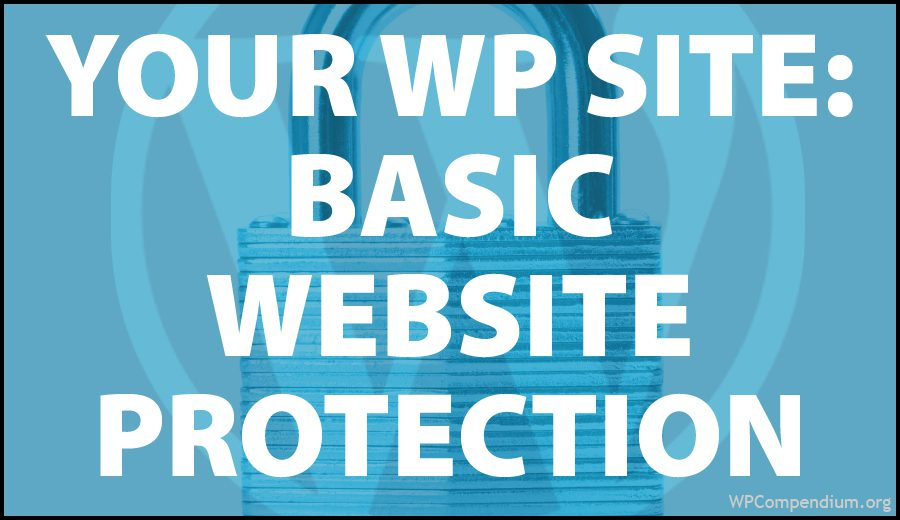 Basic Website Protection